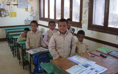 Programming in Egypt Schools